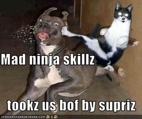 Mad ninja skillz    tookz us bof by supriz