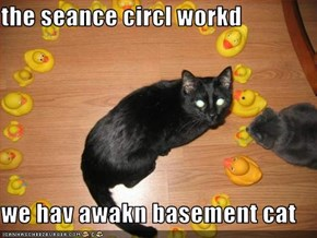 the seance circl workd  we hav awakn basement cat