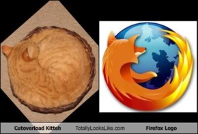 Cutoverload Kitteh Totally Looks Like Firefox Logo