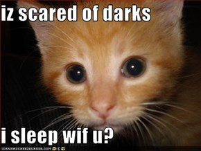 iz scared of darks  i sleep wif u?