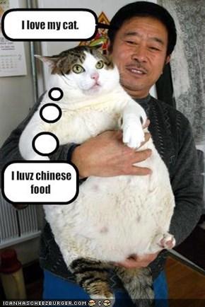 I love my cat.