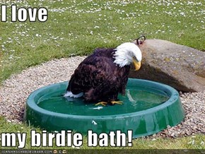 I love  my birdie bath!