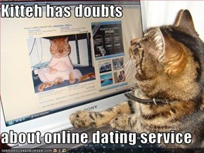 Kitteh has doubts  about online dating service