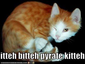 itteh bitteh pyrate kitteh
