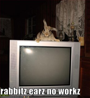 rabbitz earz no workz