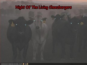 Night Of The Living Cheezburgers