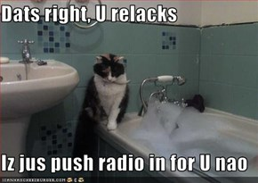 Dats right, U relacks  Iz jus push radio in for U nao