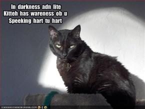 In  darkness  adn  lite