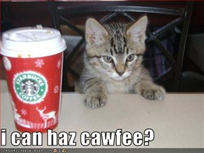 i can haz cawfee?