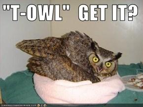 """""""T-OWL""""  GET IT?"""
