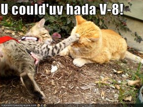 U could'uv hada V-8!