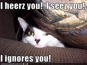 I heerz you!  I seez you!  I ignores you!