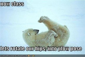 now class  lets rotate our hips, into plow pose