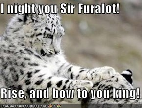 I night you Sir Furalot!  Rise, and bow to you king!