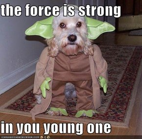 the force is strong  in you young one