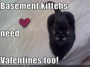 Basement kittehs need Valentines too!