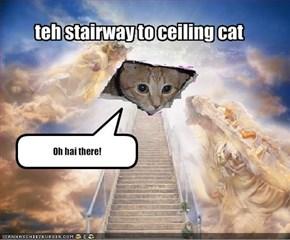 teh stairway to ceiling cat