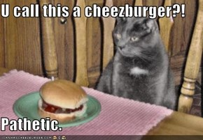 U call this a cheezburger?!  Pathetic.