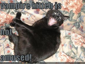 vampire kitteh is not amused!