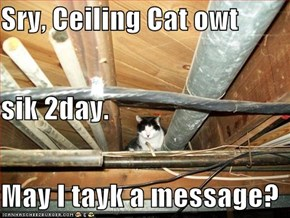Sry, Ceiling Cat owt sik 2day. May I tayk a message?