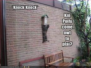 *Knock*Knock*