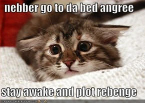 nebber go to da bed angree  stay awake and plot rebenge