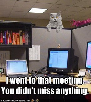 I went to that meeting. 