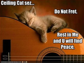 Ceiling Cat sez...