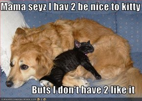 Mama seyz I hav 2 be nice to kitty                  Buts I don't have 2 like it