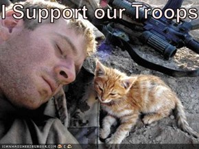 I Support our Troops!