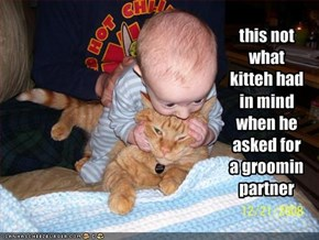 this not what kitteh had in mind when he asked for a groomin partner