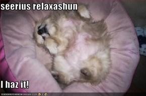 seerius relaxashun  I haz it!