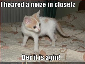 I heared a noize in closetz  Der it is agin!