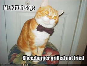 Mr. Kitteh says