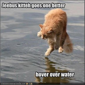 Jeebus kitteh goes one better
