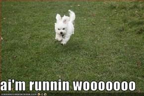 ai'm runnin wooooooo