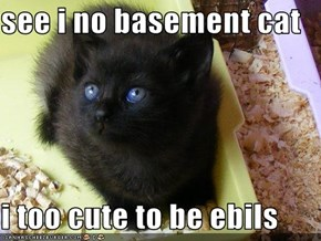 see i no basement cat  i too cute to be ebils