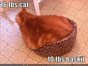 16 lbs cat  10 lbs baskit