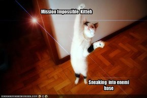 Mission Impossible  Kitteh