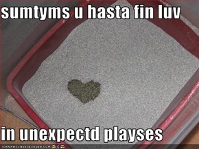 sumtyms u hasta fin luv   in unexpectd playses