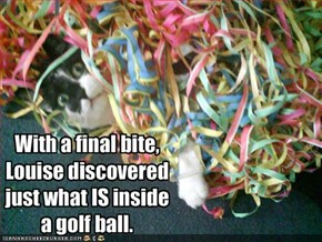 With a final bite,
