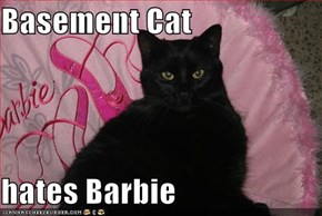 Basement Cat  hates Barbie