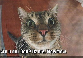 Are u der God? itz me, MowMow.