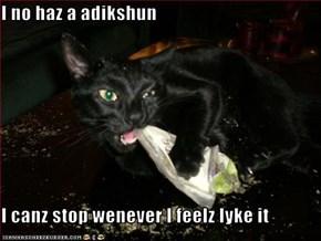 I no haz a adikshun  I canz stop wenever I feelz lyke it