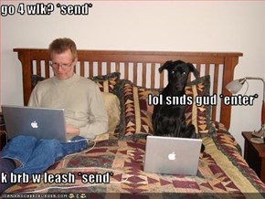 go 4 wlk? *send* lol snds gud *enter* k brb w leash *send*