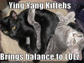 Ying Yang Kittehs  Brings balance to LOLz