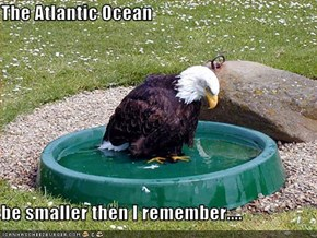 The Atlantic Ocean  be smaller then I remember....
