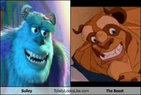 Sulley Totally Looks Like The Beast