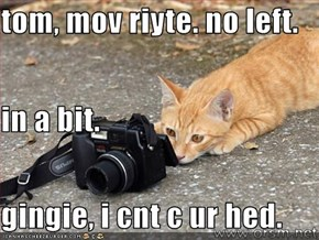 tom, mov riyte. no left. in a bit. gingie, i cnt c ur hed.