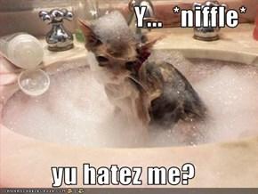 Y...  *niffle*           yu hatez me?